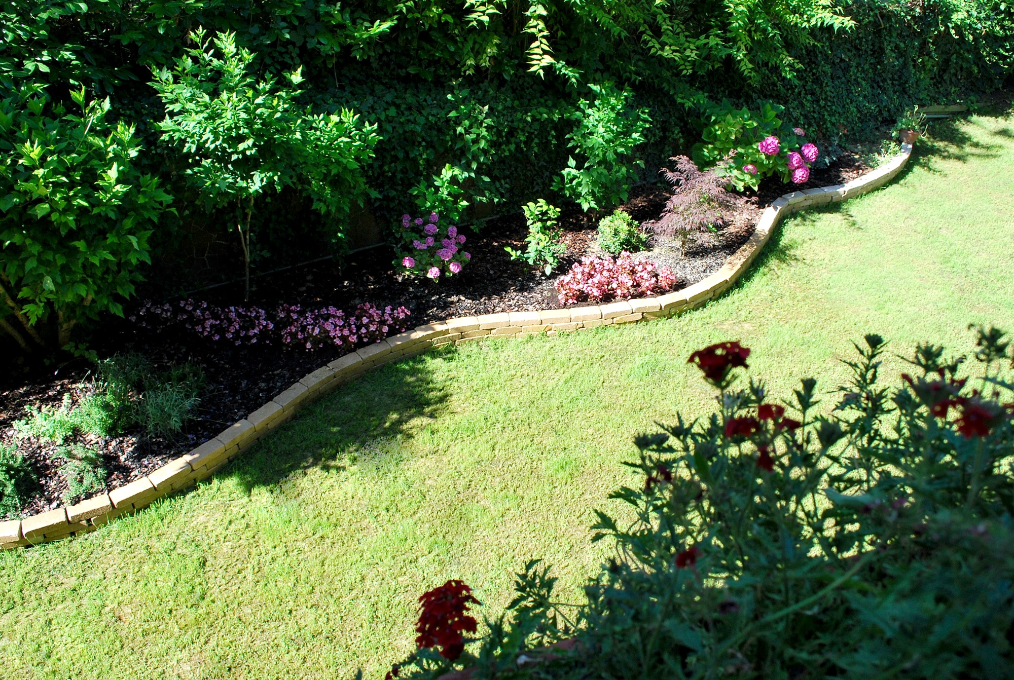 Bed and Breakfast Urbino - giardino